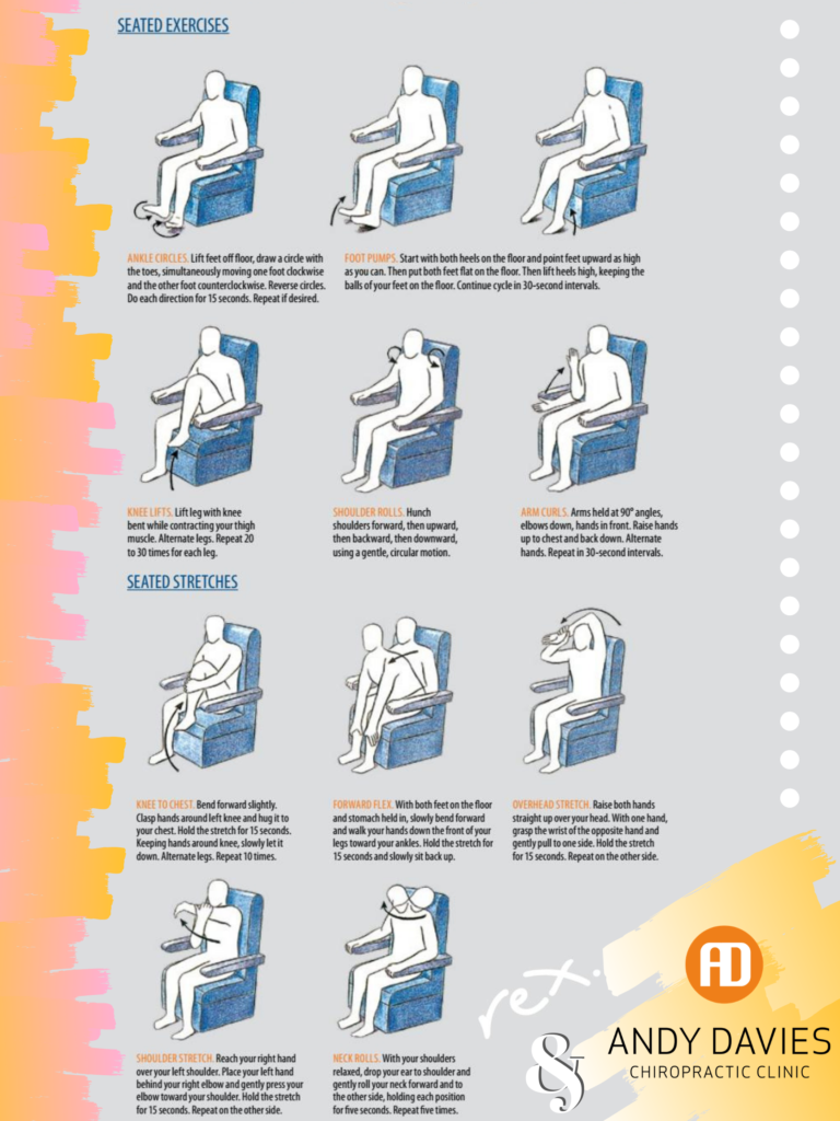 Seated Exercises and Stretches