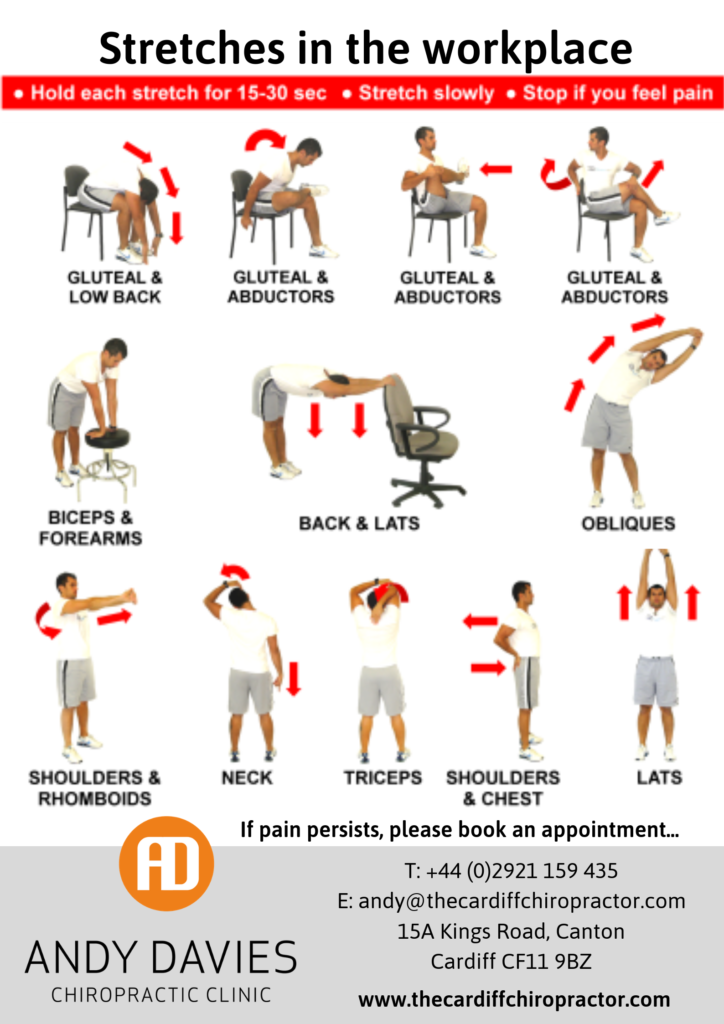 Stretches and Exercises